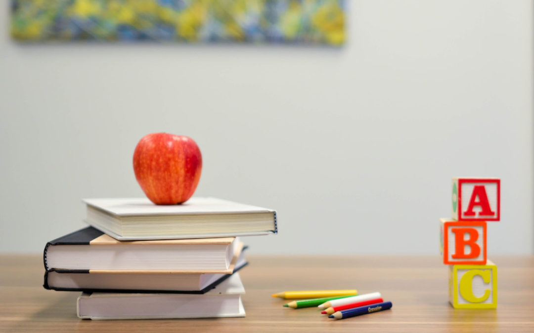 Der Start in das neue Schuljahr-Klassen 2 bis 4